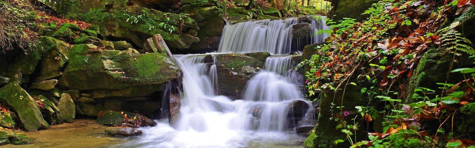 Wigierski Park Narodowy - rzeka