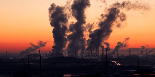 Zanieczyszczenie przyrody
