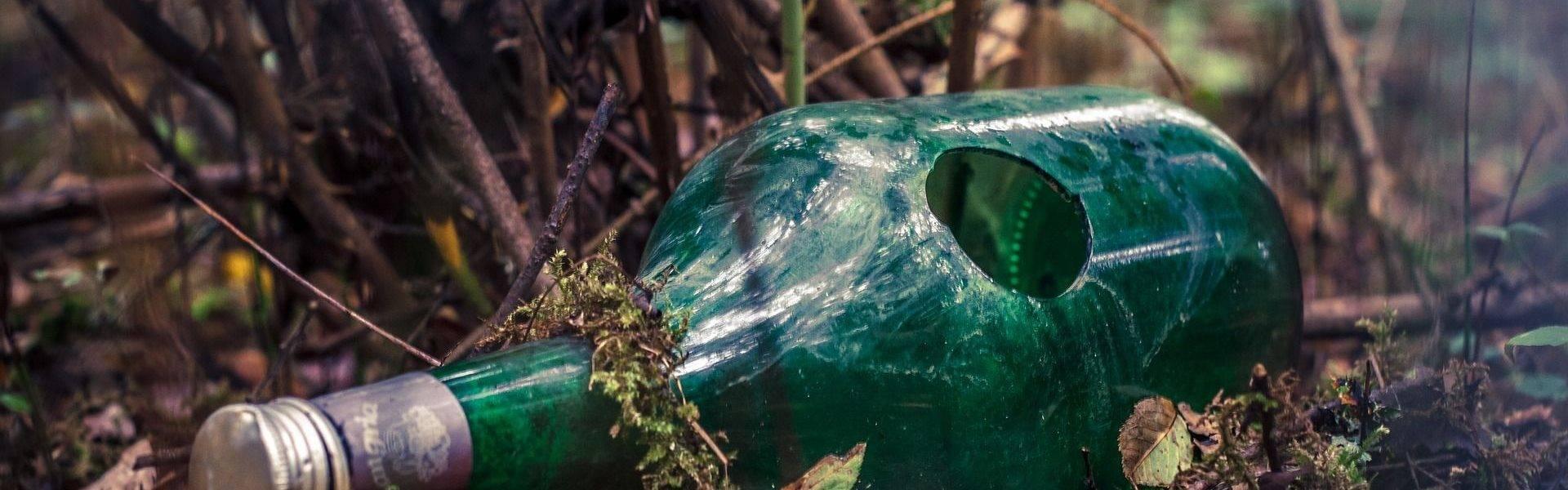 Butelka w lesie