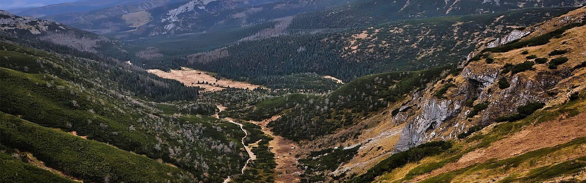 Dolina górska